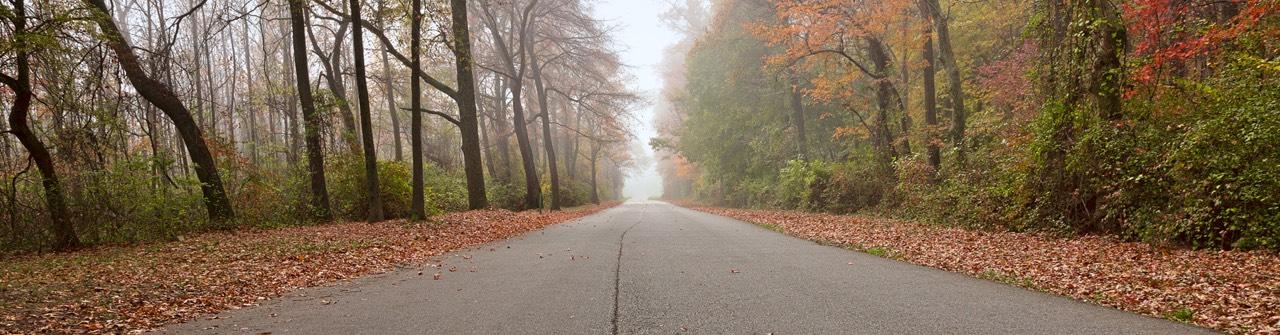 mysty fall road